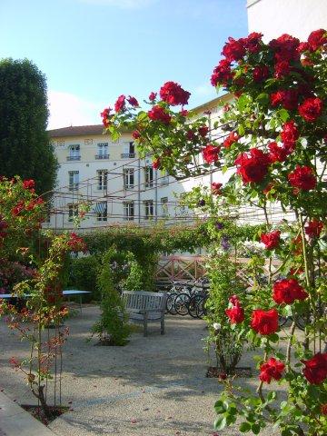 roseraie_les_loges_du_parc.jpg