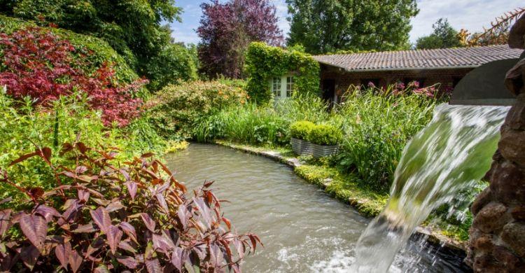 jardin_du_brule.jpg